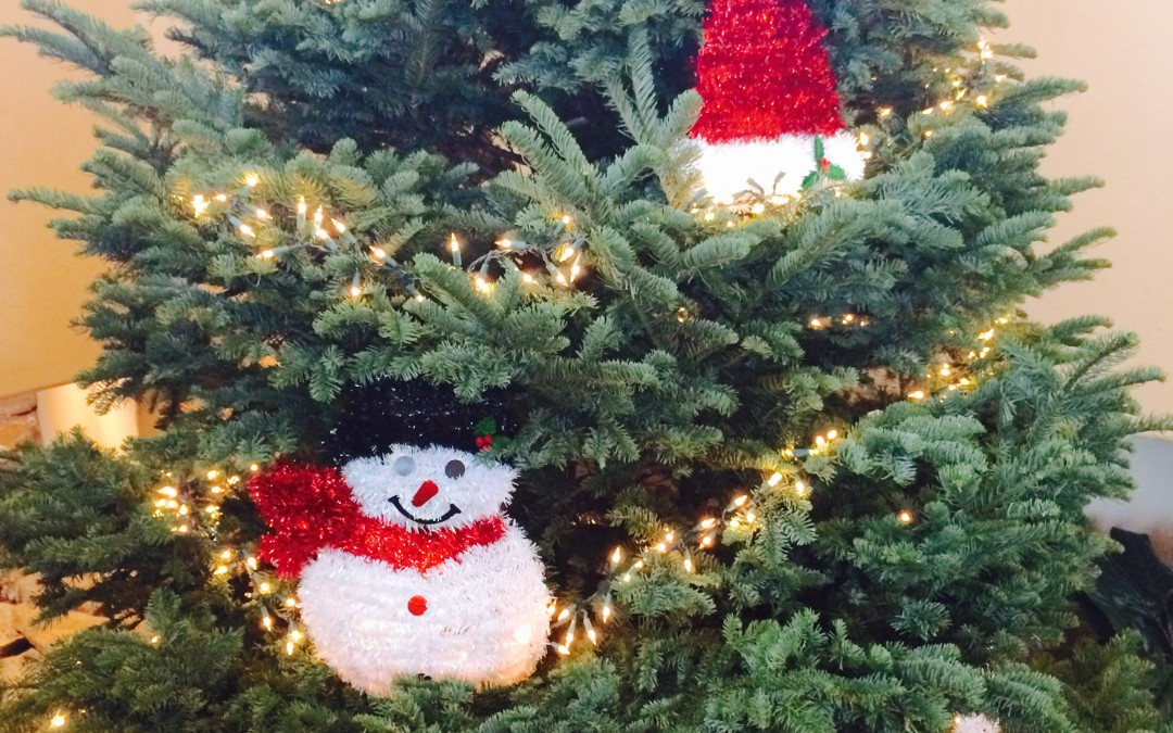 All Coc Christmas Trees.Coc Happenings Archives Page 10 Of 22 Central Oregon